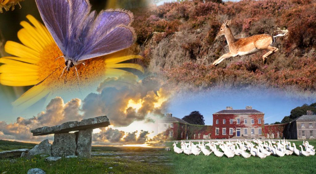DCHG Heritage Ireland 2030 report ©Government of Ireland